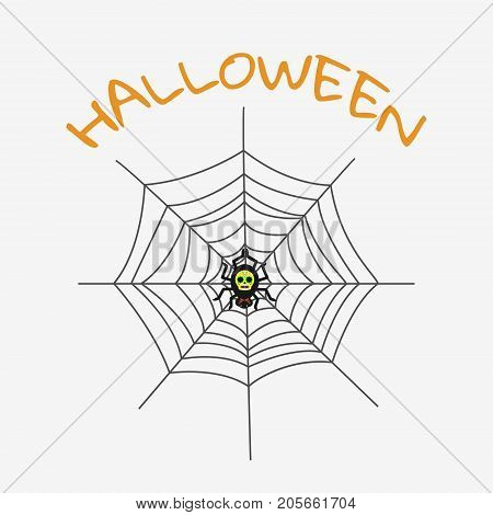 Creepy Spider Web Over White Background.