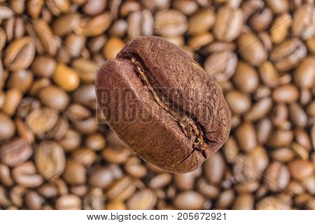 Single coffee bean close-up on a blurry background of coffee beans
