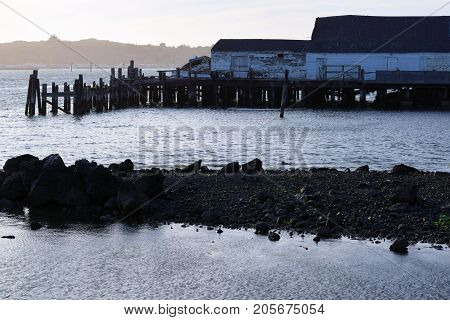 Abandoned Fisherman's Warf with a collapsing abandoned seafood warehouse on a dilapidated wooden pier taken in Bodega Bay, CA