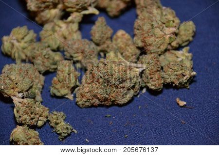 indica cannabis strain known as Charlie sheen used for medicinal purposes