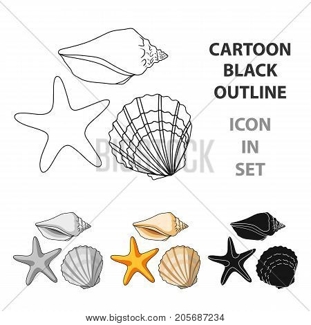 Seashells from the bottom of the sea.Summer rest single icon in cartoon style vector symbol stock web illustration.