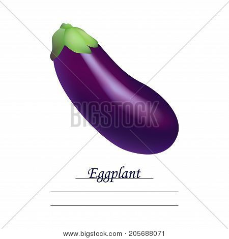 Fresh Eggplant vegetable isolated icon. Eggplant for farm market, vegetarian salad recipe design. vector illustration in flat style