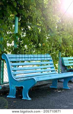 blue bench, sitting in the Park, bench in the sun, a walk in the Park