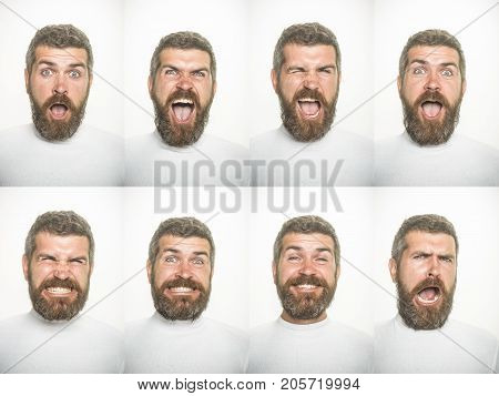 Emotion set of bearded scared man. Man with long beard and mustache on surprised happy and angry face. Guy collage with different emotions isolated on white. Barber fashion and beauty. Feeling and emotions.