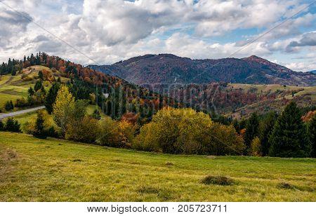 Autumnal Scenery In Carpathian Mountains