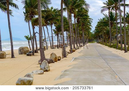 Windy Coastal Road On A Cloudy Day With Palms. The Concept Of Off-season In The Resort