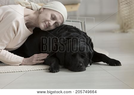 Pet Therapy Helping Woman