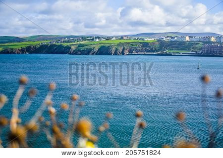 Landscape view of Isle of Man coastline with hill and mountain through a dried flower from Peel Castle, Isle of Man