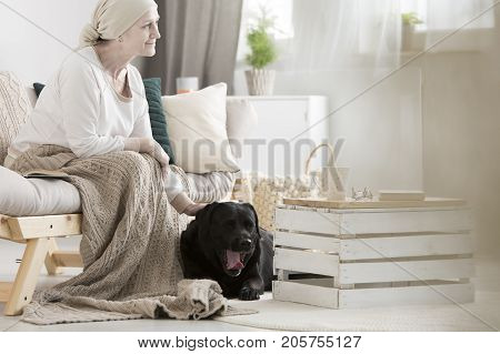 Woman With Dementia Stroking Dog