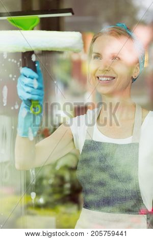 Housewife Washing Windows With Squeegee