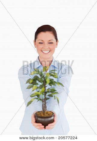 Hübsche rothaarige Frau hält eine Zimmerpflanze stehen