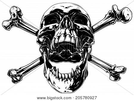 Graphic realistic black and white detailed human skull with crossed bones and canines vector
