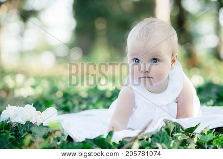 Baby Girl 8 Months Old Portrait Looking Up To Camera Outdoors In Sunlight