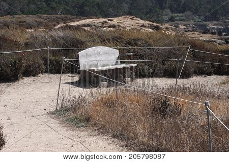 This is an image of a resting bench at Point Lobos State Preserve in Carmel, California.