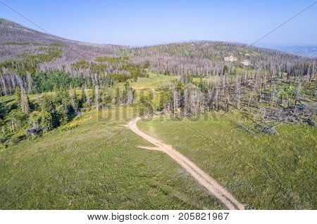 Aerial view of Old Flowers Road (Roosevelt National Forest near Fort Collins, Colorado) with a  forest burned by wildfire and sky obscured by smoke from distant fires in Montana.