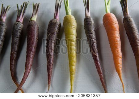 Close-up of carrots arranged side by side on table