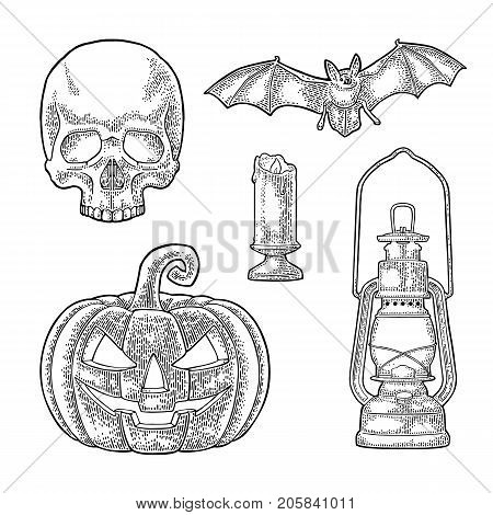 Set for invitation and poster Halloween. Pumpkin with scary face flying bat human skull burning candle . Vector black vintage engraving illustration. Isolated on white background