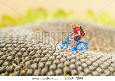 A toy cyclist is taking a ride on a middle of a sunflower. Ecotourism concept.