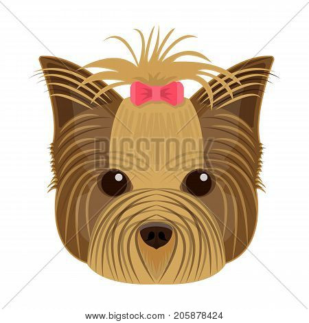 Muzzle of a pet, a hairdress dog with a bow. Pet, dog care single icon in cartoon style vector symbol stock illustration .