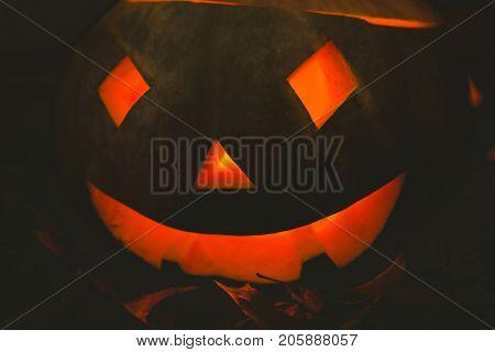Close up of illuminated jack o lantern in darkroom during Halloween