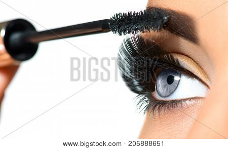 Mascara Applying. Long Lashes closeup. Mascara Brush. Eyelashes extensions. Makeup for Blue Eyes. Eye Make up Apply, Eyebrows shaping. Beautiful woman eyes make-up. Isolated on white background
