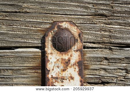 Abstract Textures: Rotting, Peeling, Weathered Wood