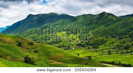 Landscape of green valley and layers of rice fields in Sapa Vietnam.