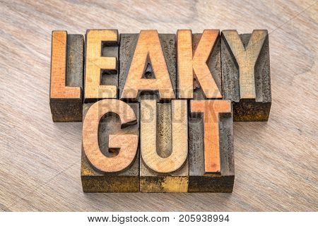 Leaky gut word abstract in vintage letterpress wood type printing blocks