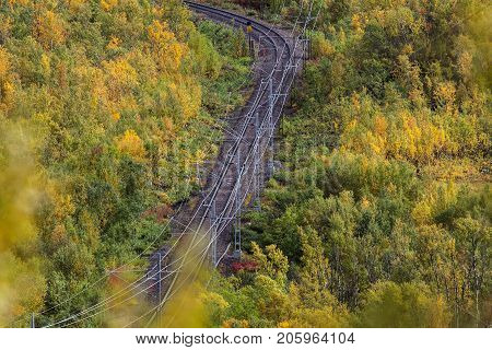 Railroad, railway in colorful forest. Trees in different colors. Shot from long distance.
