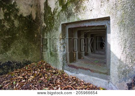 A loophole of old military bunker in forest. The concrete bunker is covered with moss. There are leaves on the ground.