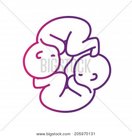 line nice babies twins with umbilical cord vector illustration