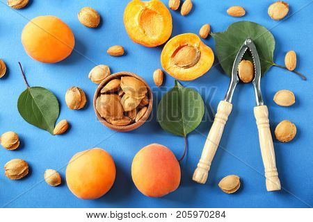 Composition with apricots, kernels and nutcracker tool on color background