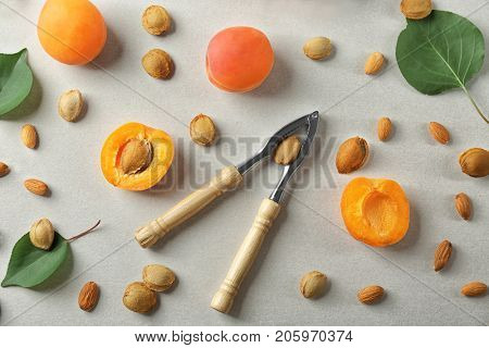 Composition with apricots, kernels and nutcracker tool on light background