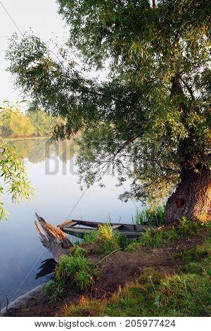 sunken old woden boat in summer lake