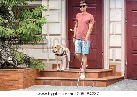 Guide dog helping young blind man outdoors