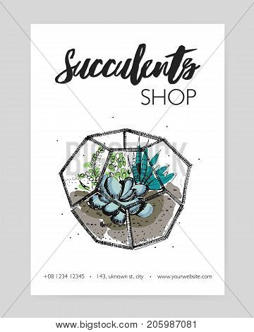Minimalistic flyer template with green succulents growing in glass geometric florarium hand drawn on white background. Indoor plant decoration. Vector illustration for florist shop advertisement