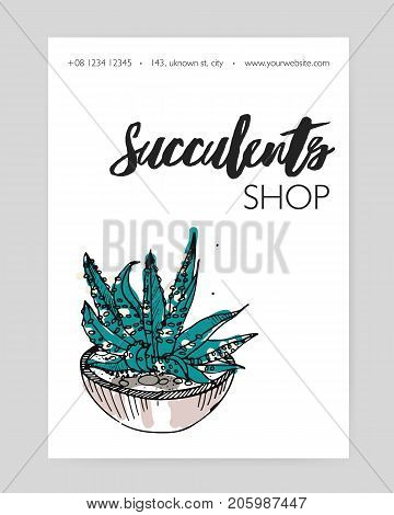 Flyer template with hand drawn desert plant growing in pot and place for text on white background. Natural home decoration, potted houseplant. Vector illustration for succulent shop advertisement
