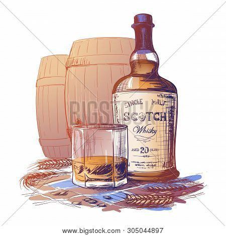 Scotch Whiskey Bottle, Glass And Casks With Some Barley Ears And Grains. Painted Sketch Isolated On