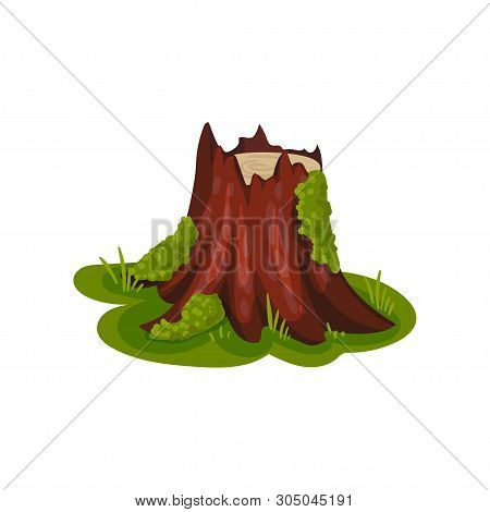 Old Stump With Bark In The Meadow. Vector Illustration On White Background.