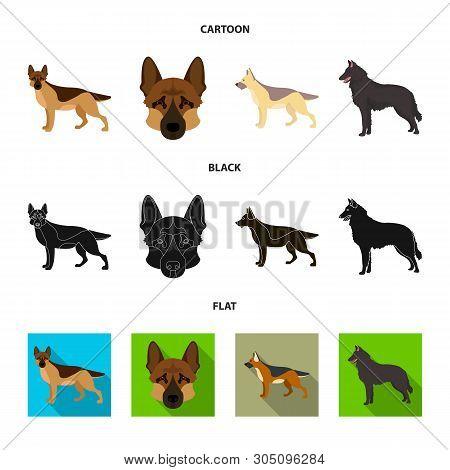 Vector Illustration Of Sheepdog And Sheltie Symbol. Collection Of Sheepdog And Shepherd Stock Vector