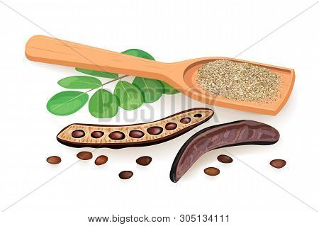 Ripe Carob Husk, Branch With Sweet Pods, Leaves, Powder In Wooden Spoon. Vector Illustration.