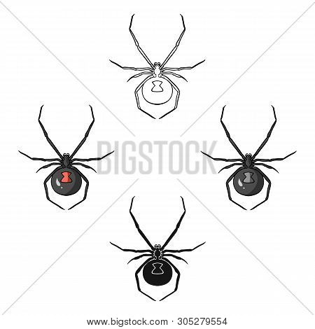 Black Widow Spider Icon In Cartoon, Black Style Isolated On White Background. Insects Symbol Stock V