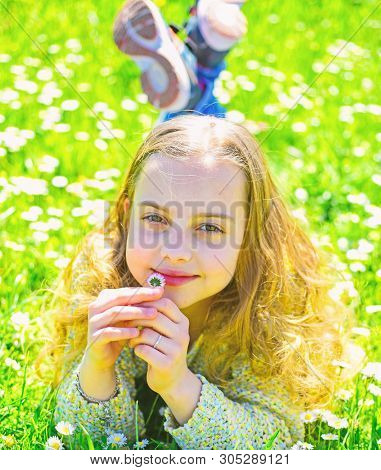 Sensitivity concept. Girl on smiling face holds daisy flower, sniffs aroma. Child enjoy spring sunny weather while lying at meadow with daisy flowers. Girl lying on grass, grassplot on background poster
