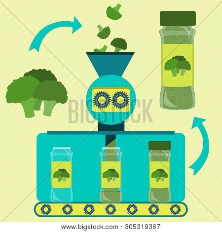 Broccoli Powder Line Series Production. Factory Of Broccoli Powder. Fresh Branch Broccoli Being Proc