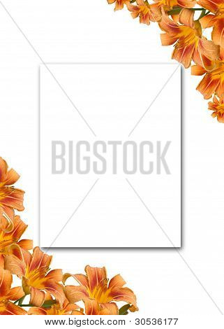 Flower Lily Frame With Space For The Text.