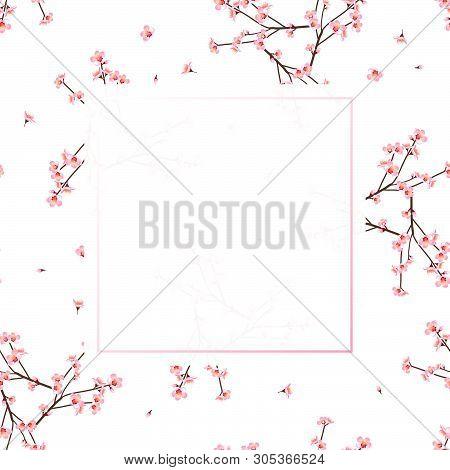 Momo Peach Flower Banner On White Background. Vector Illustration.