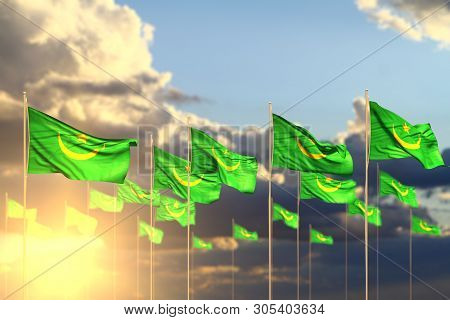 Beautiful Many Mauritania Flags On Sunset Placed In Row With Soft Focus And Place For Content - Any
