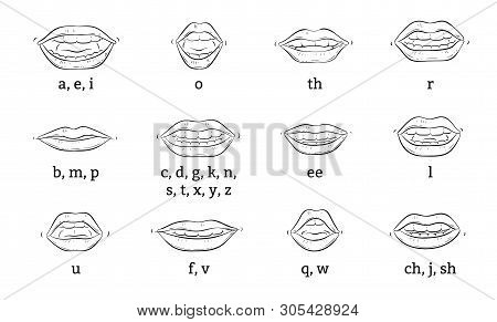 Mouth Animation. Cartoon Lips Speak Expression, Articulation And Smile. Speaking Talking Mouth Vecto