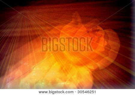 Abstract blurred flower with light flare and ripple effect