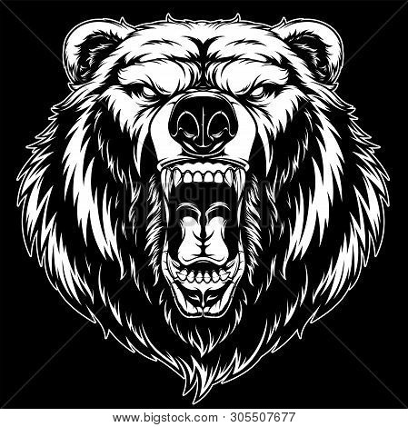poster of Vector illustration, head of a ferocious grizzly bear, on a black background
